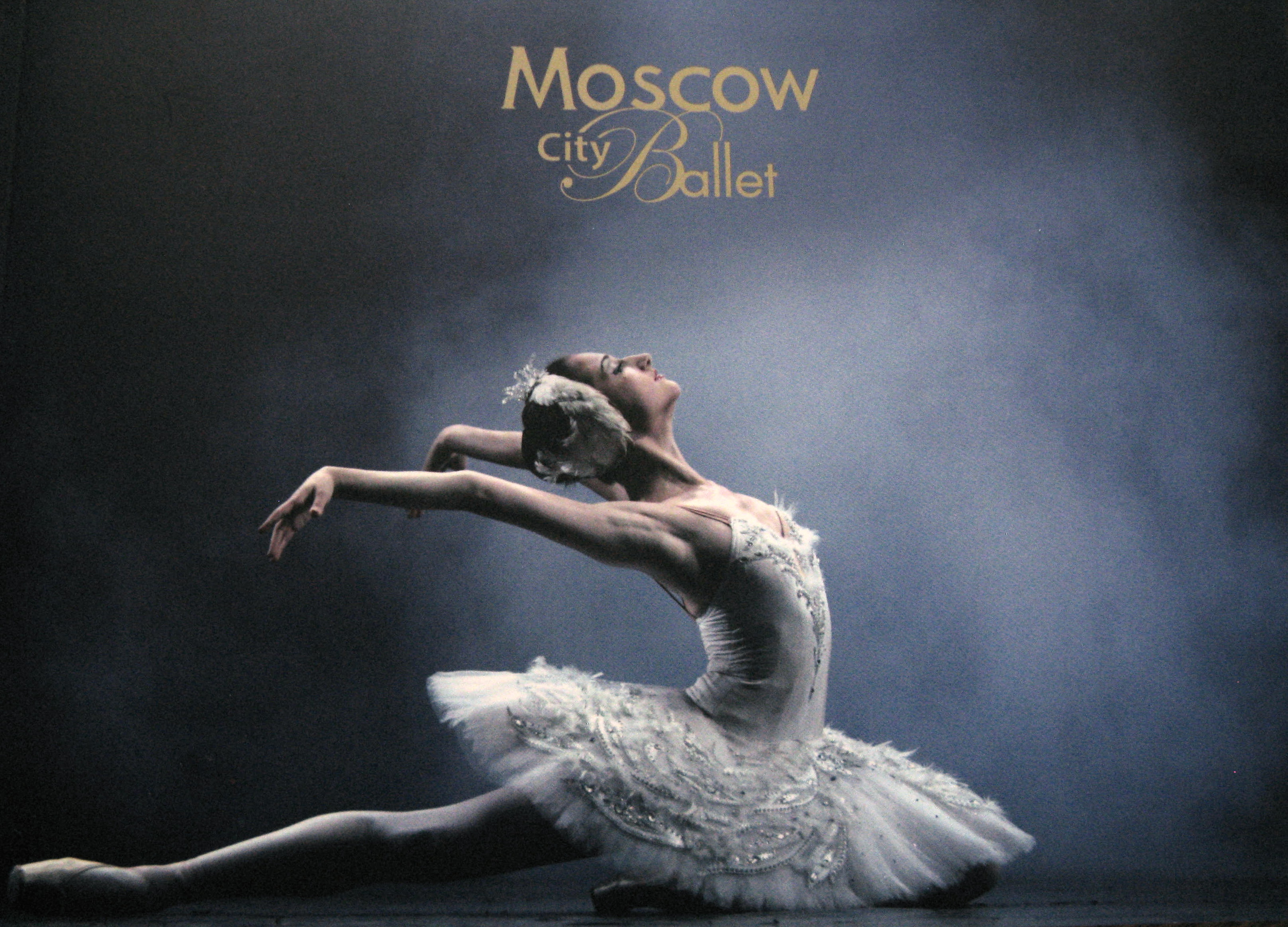 Ballet Beautiful Shoes Review