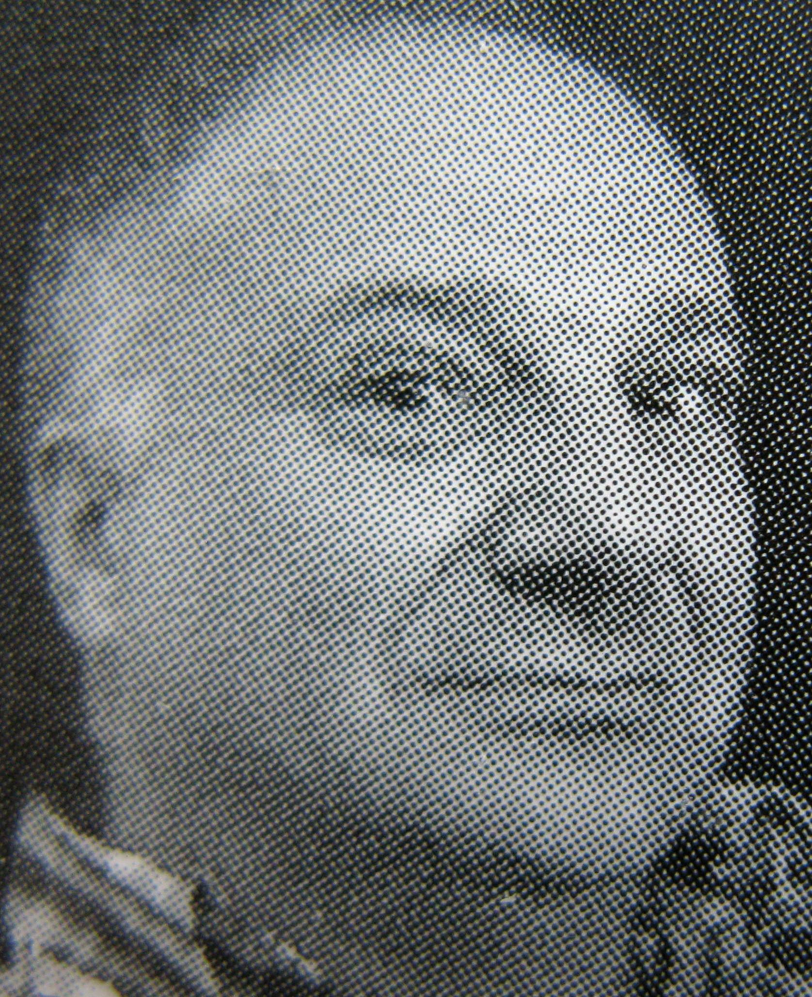 Lana Golja picture