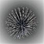 4 Sparkles