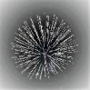 5 Sparkles